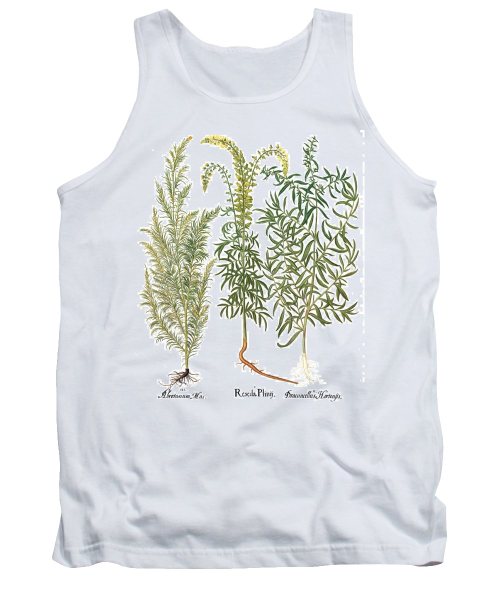 1613 Tank Top featuring the photograph Artemisiae & Reseda by Granger