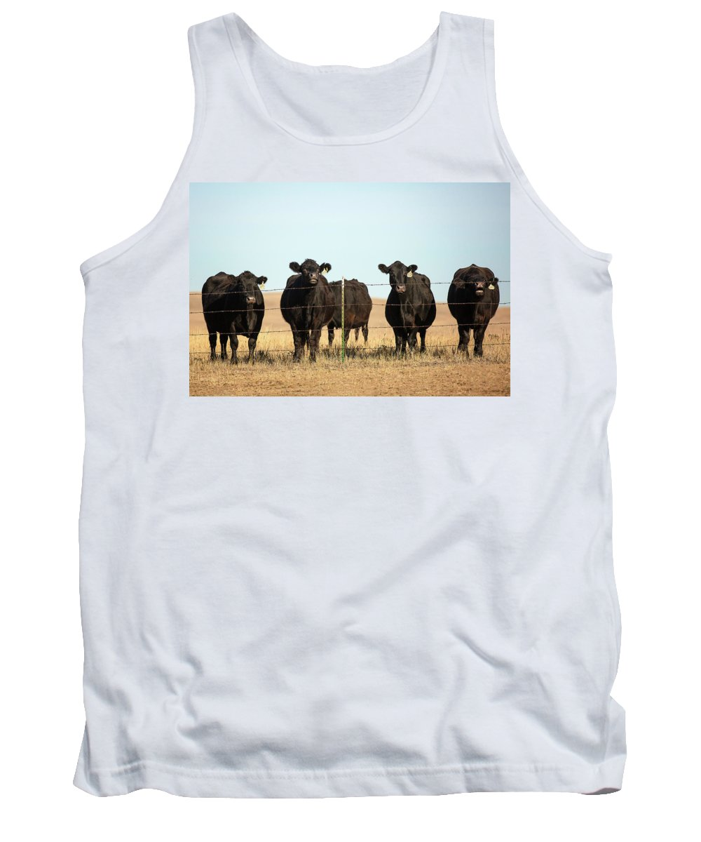 Black Angus Tank Top featuring the photograph At The Fence by Todd Klassy
