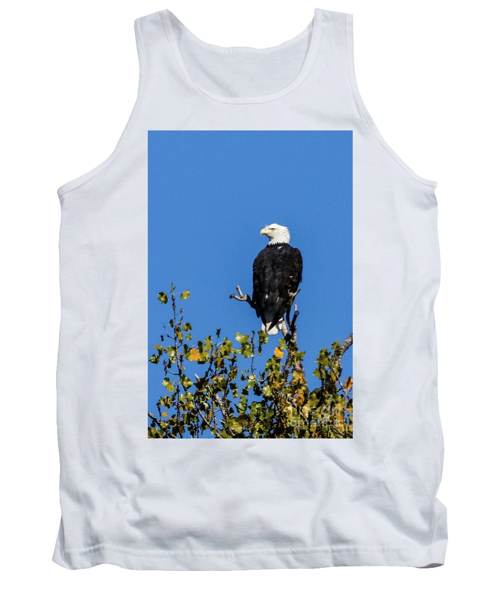Eagle Tank Top featuring the photograph Bald Eagle In The Tree by Terri Morris