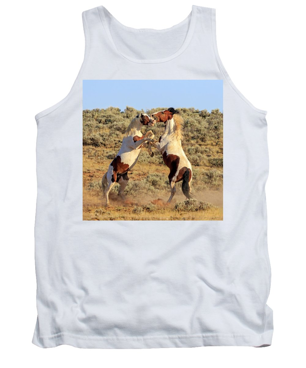 Wild Horses Tank Top featuring the photograph Battle Of The Paints by Jack Bell