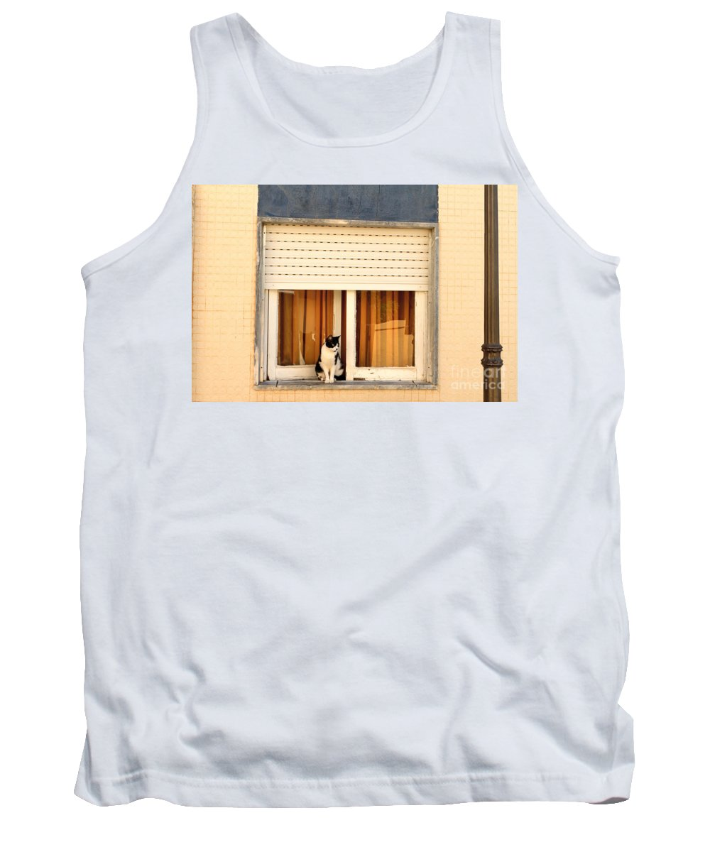 Cat Tank Top featuring the photograph Black And White Cat On The Windowsill by Louise Heusinkveld