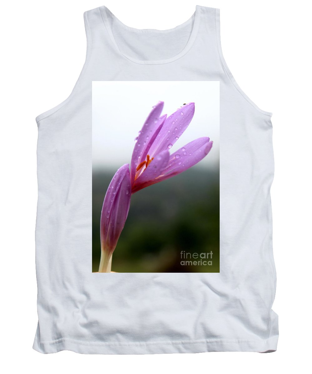 Purple Tank Top featuring the photograph Blooming Purple Flower by Vladi Alon