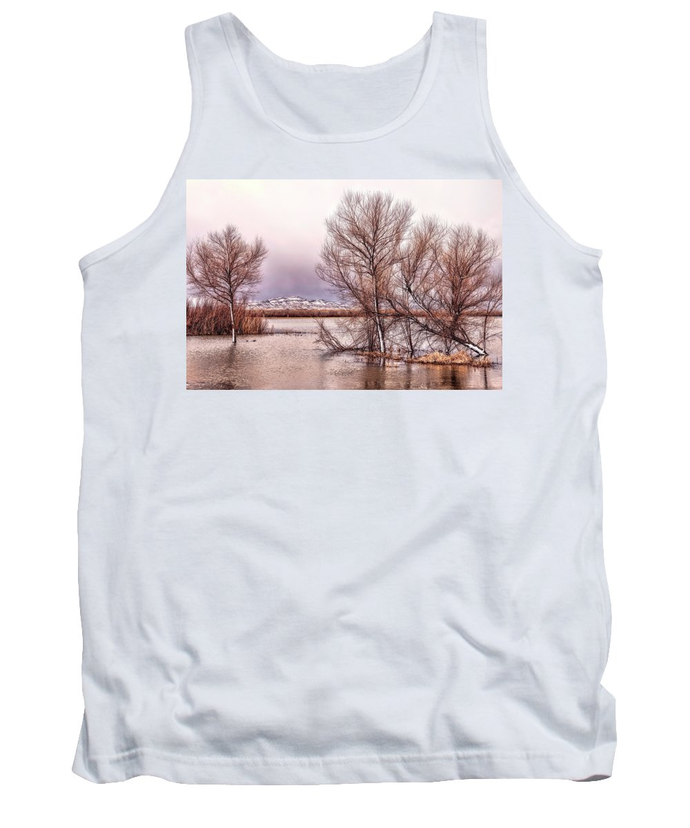 Bosque Del Apache Tank Top featuring the photograph Bosque Winter by Diana Powell
