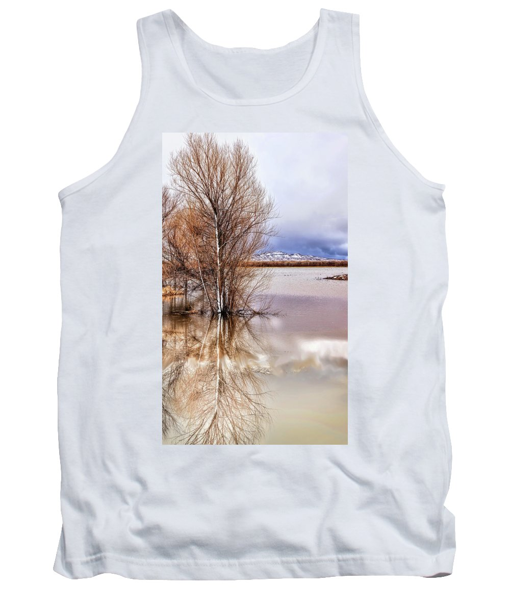 Bosque Del Apache Tank Top featuring the photograph Bosque Winter IIi by Diana Powell