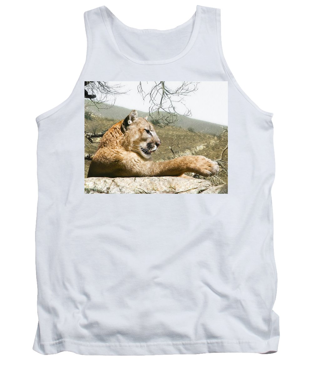 Cougar Tank Top featuring the photograph California Cougar by Lynn Andrews