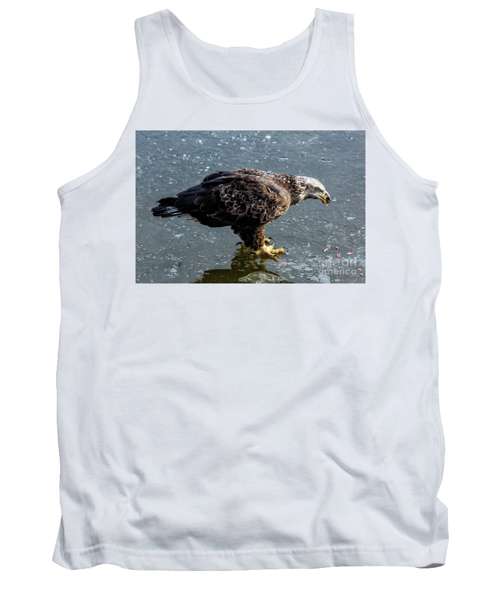 Eagles Tank Top featuring the photograph Cautious Eagle by Terri Morris