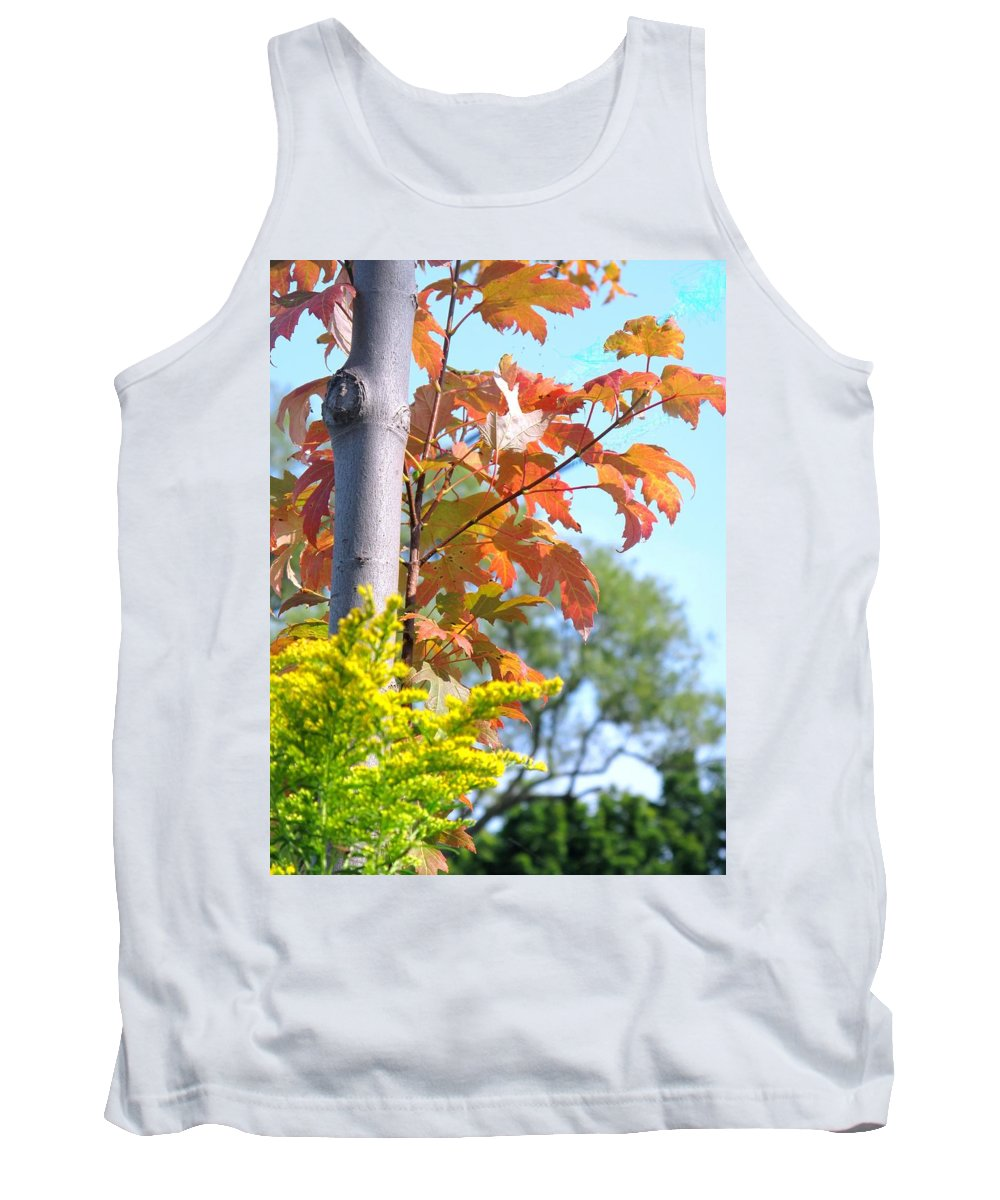 Maple Tank Top featuring the photograph Changing Leaves by Ian MacDonald