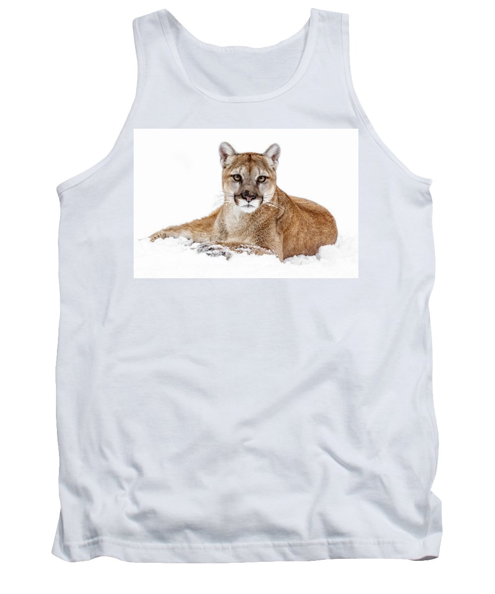 Cougar On White Tank Top featuring the photograph Cougar On White by Wes and Dotty Weber