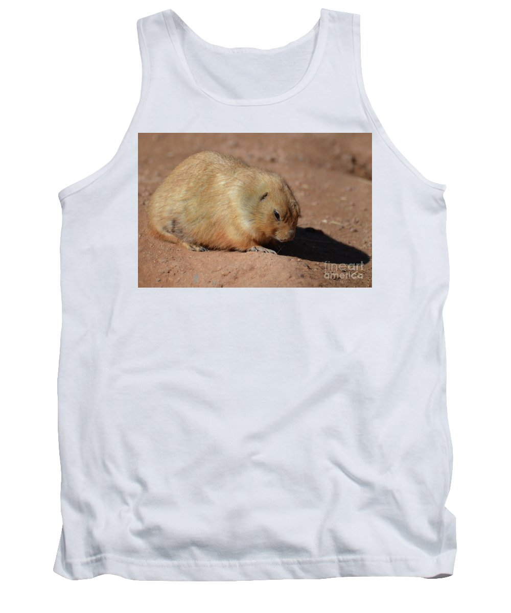 Prairie-dog Tank Top featuring the photograph Cute Ground Squirrel Burrowing In The Dirt by DejaVu Designs
