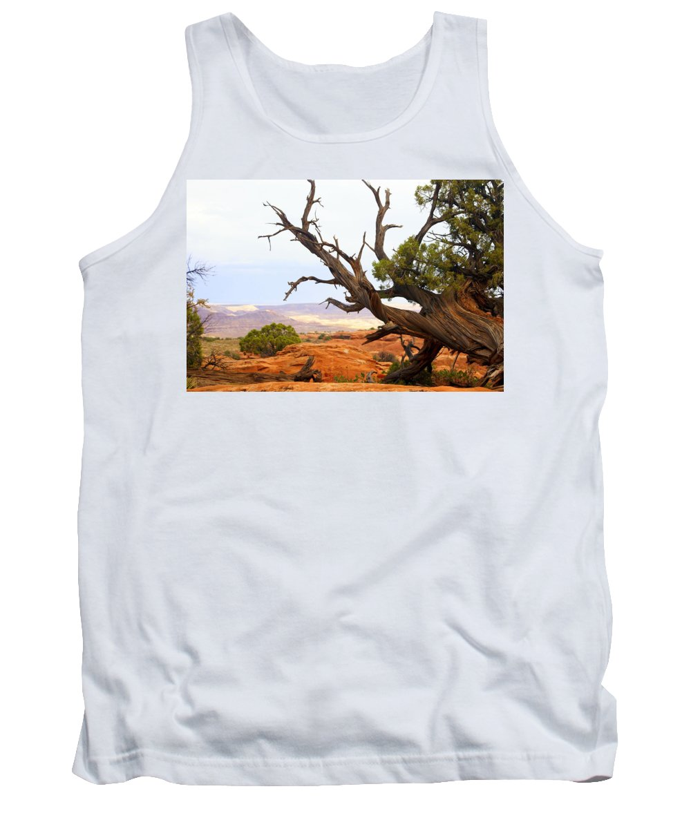 Southwest Art Tank Top featuring the photograph Devils Garden 2 by Marty Koch