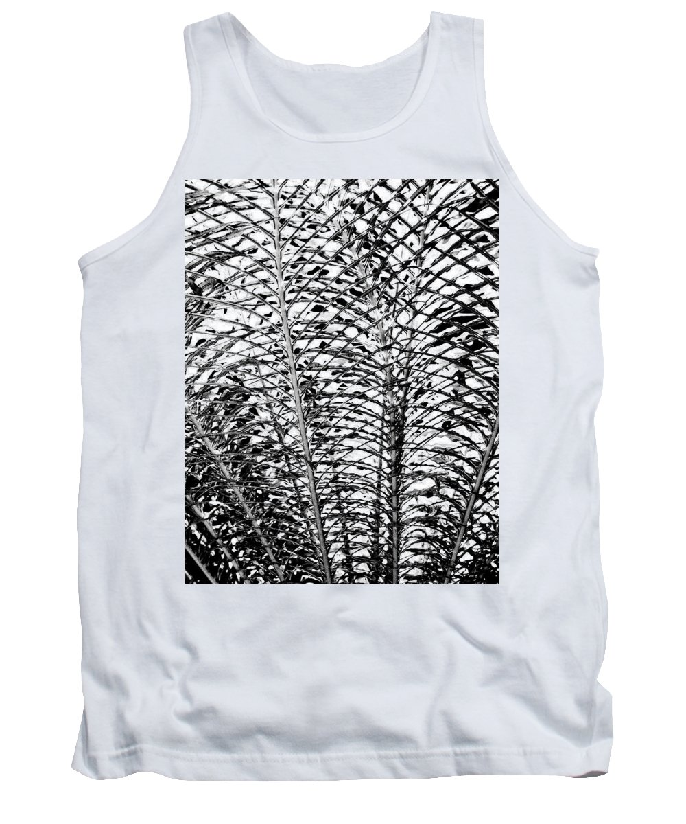 Fern Tank Top featuring the photograph Diffusion by William Dey