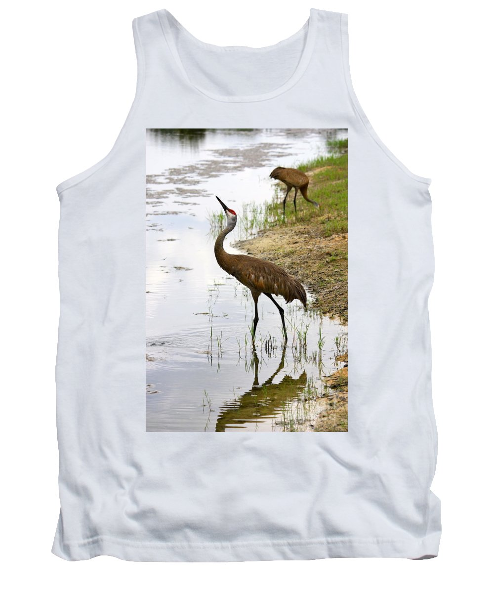 Sandhill Cranes Tank Top featuring the photograph Dip In The Pond by Carol Groenen