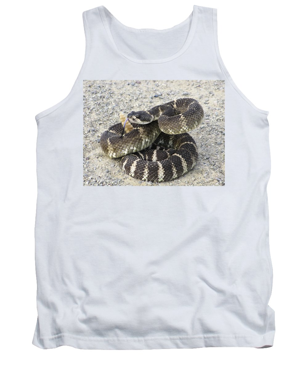Rattlesnake Tank Top featuring the photograph Don't Step On Me by Karen W Meyer