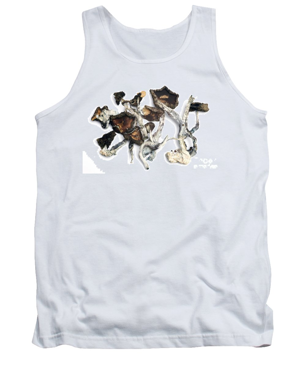 Biology Tank Top featuring the photograph Dried Psilocybe Cubensis by Ford McCann