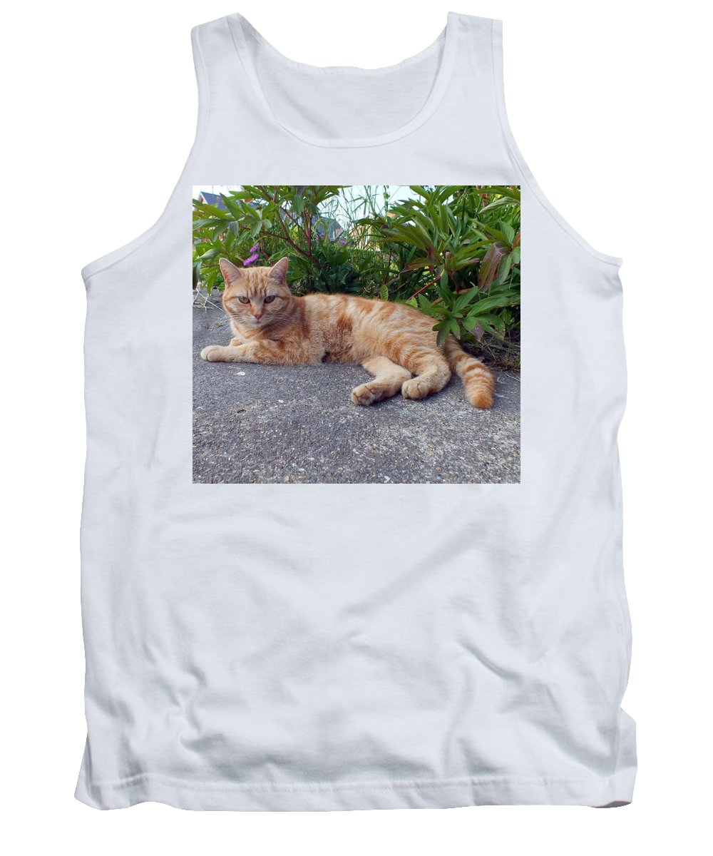 Cat Tank Top featuring the photograph Flame by Stephen Willmer