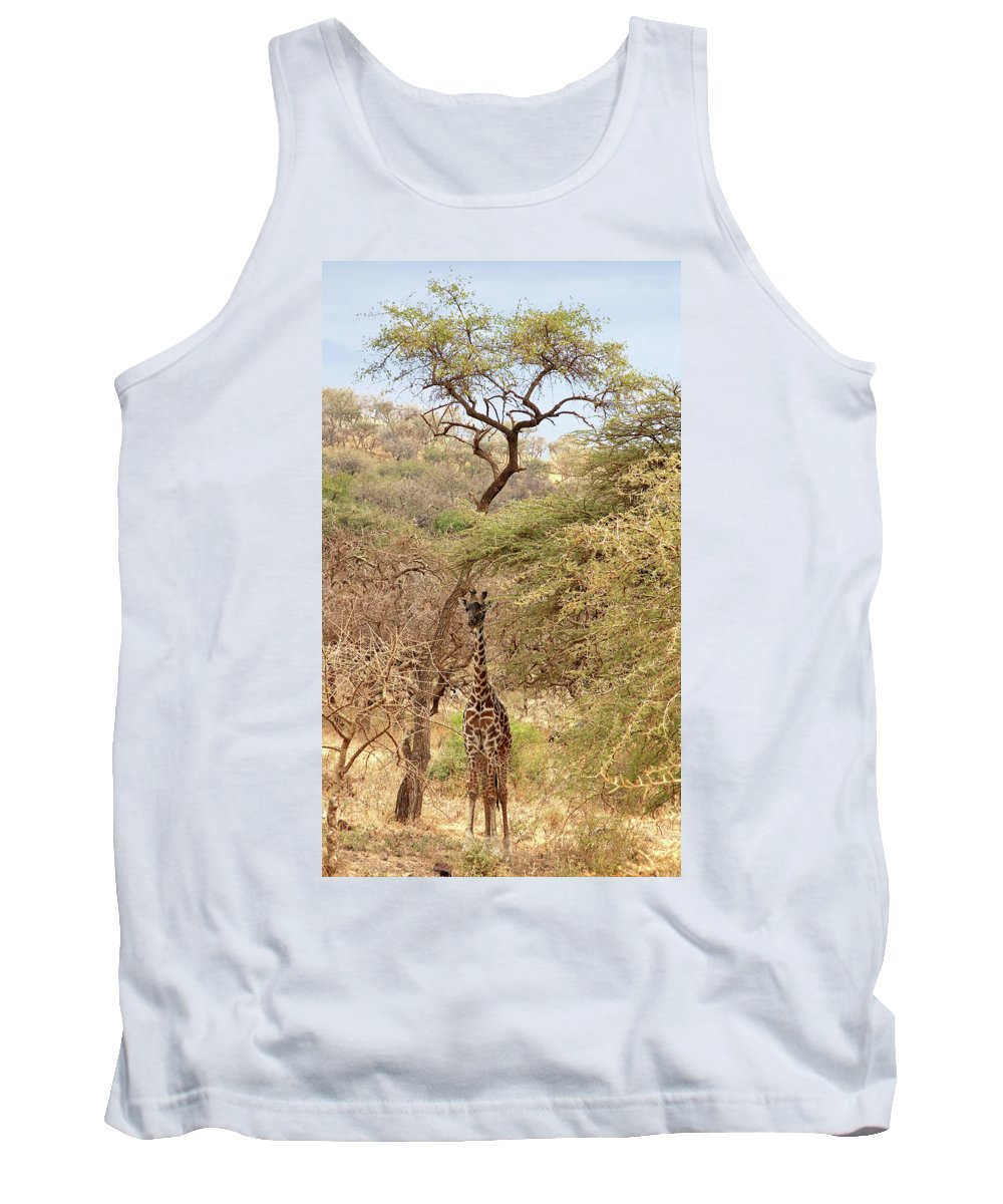 African Landscape Tank Top featuring the photograph Giraffe Camouflage by Gill Billington