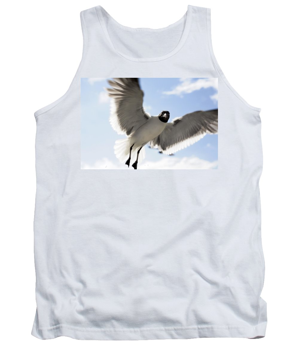 Seagull Tank Top featuring the photograph Gull In Flight by Marilyn Hunt