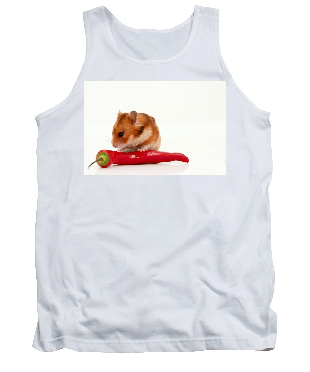 Hamster Tank Top featuring the photograph Hamster Eating A Red Hot Pepper by Yedidya yos mizrachi