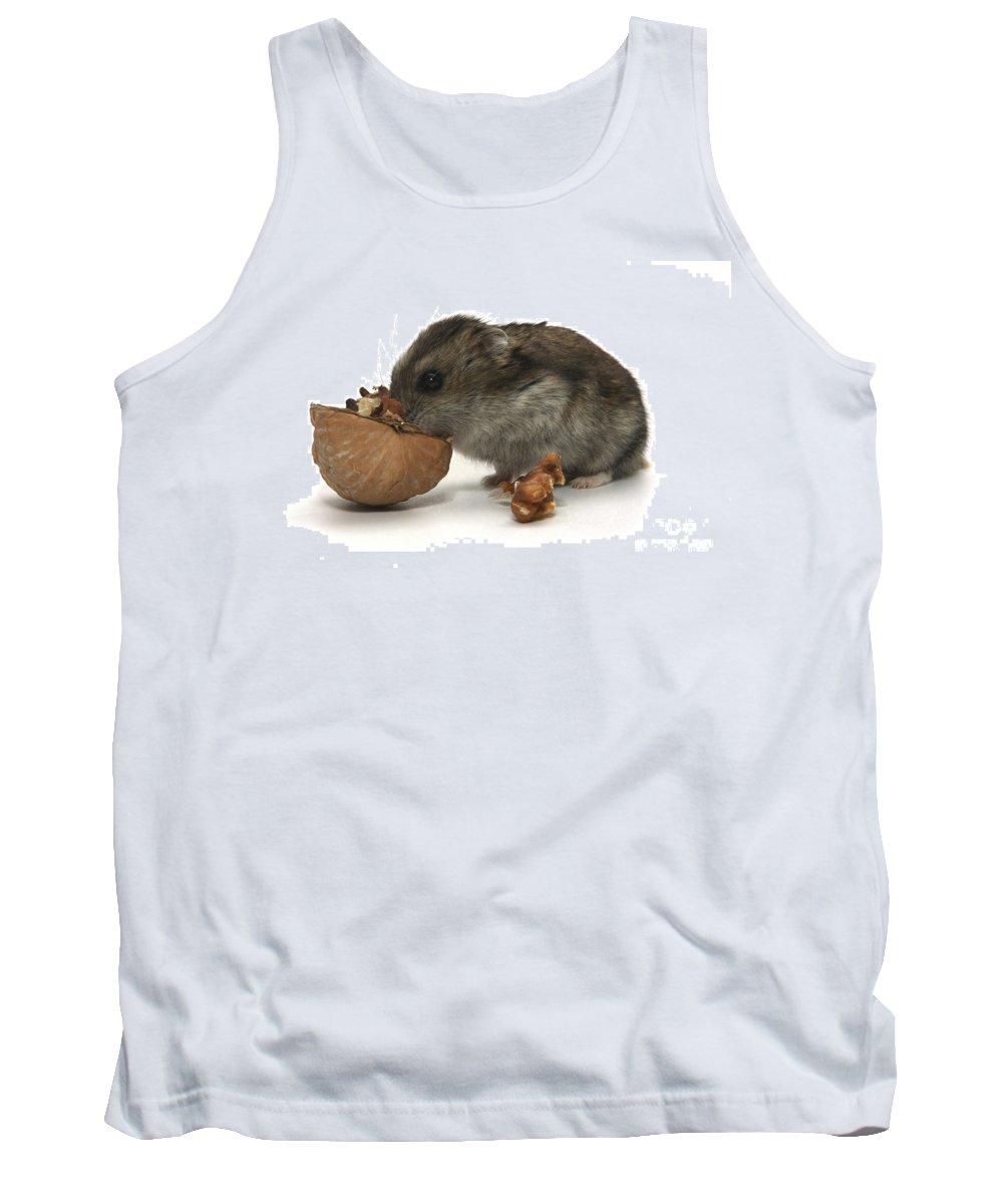 Hamster Tank Top featuring the photograph Hamster Eating A Walnut by Yedidya yos mizrachi
