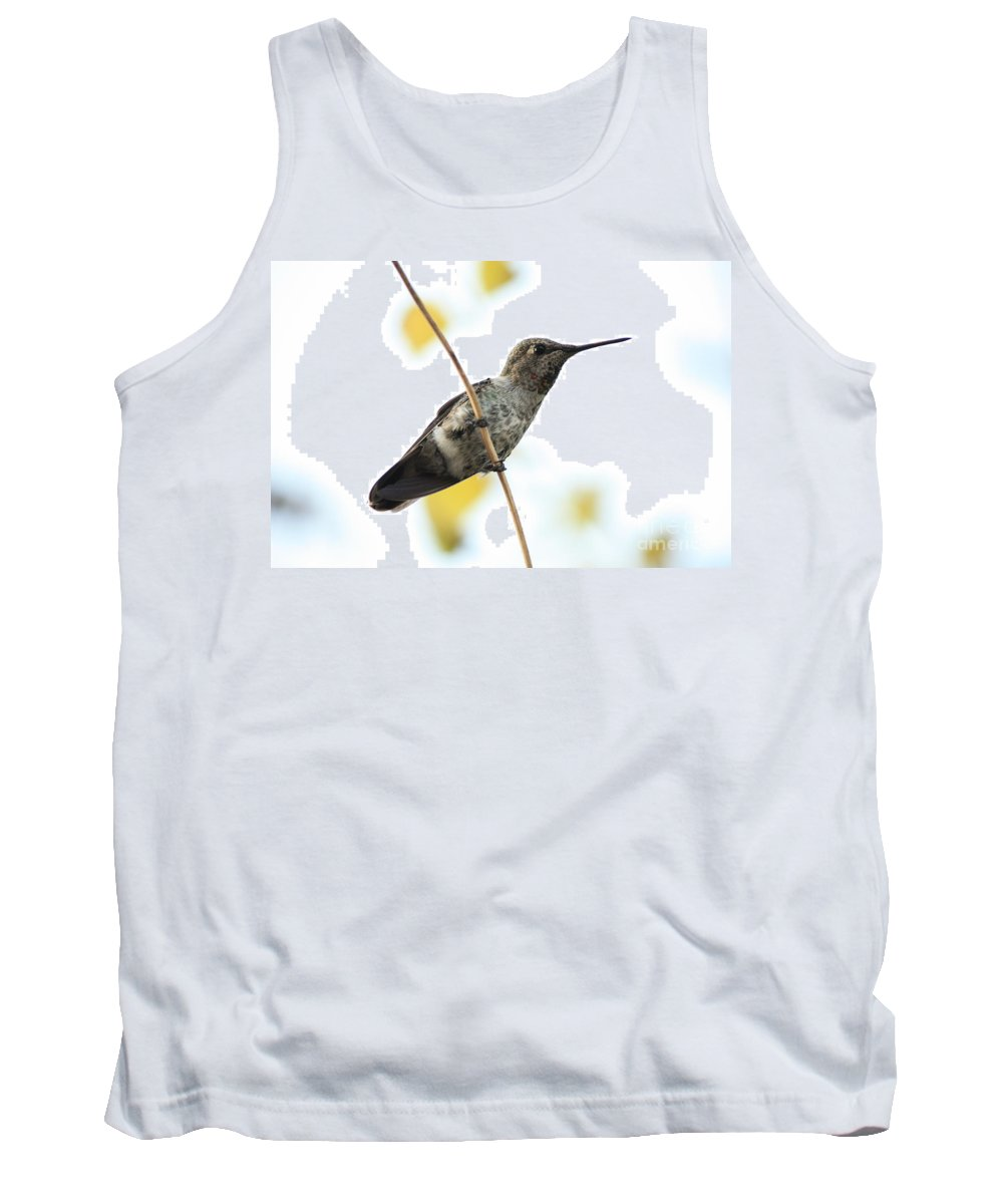 Hummingbird Tank Top featuring the photograph Hummingbird On Tightrope by Carol Groenen