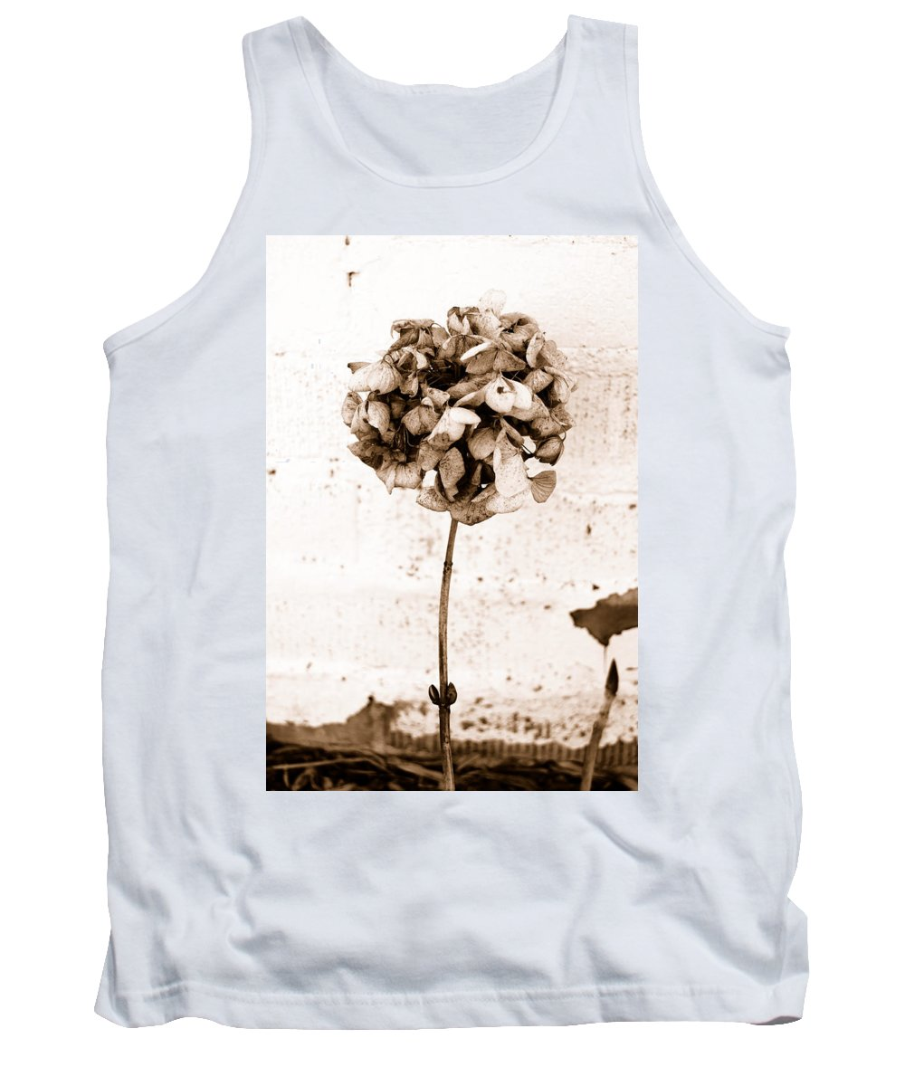 Sepia Tank Top featuring the photograph Hydrangea Interest by Trish Hale