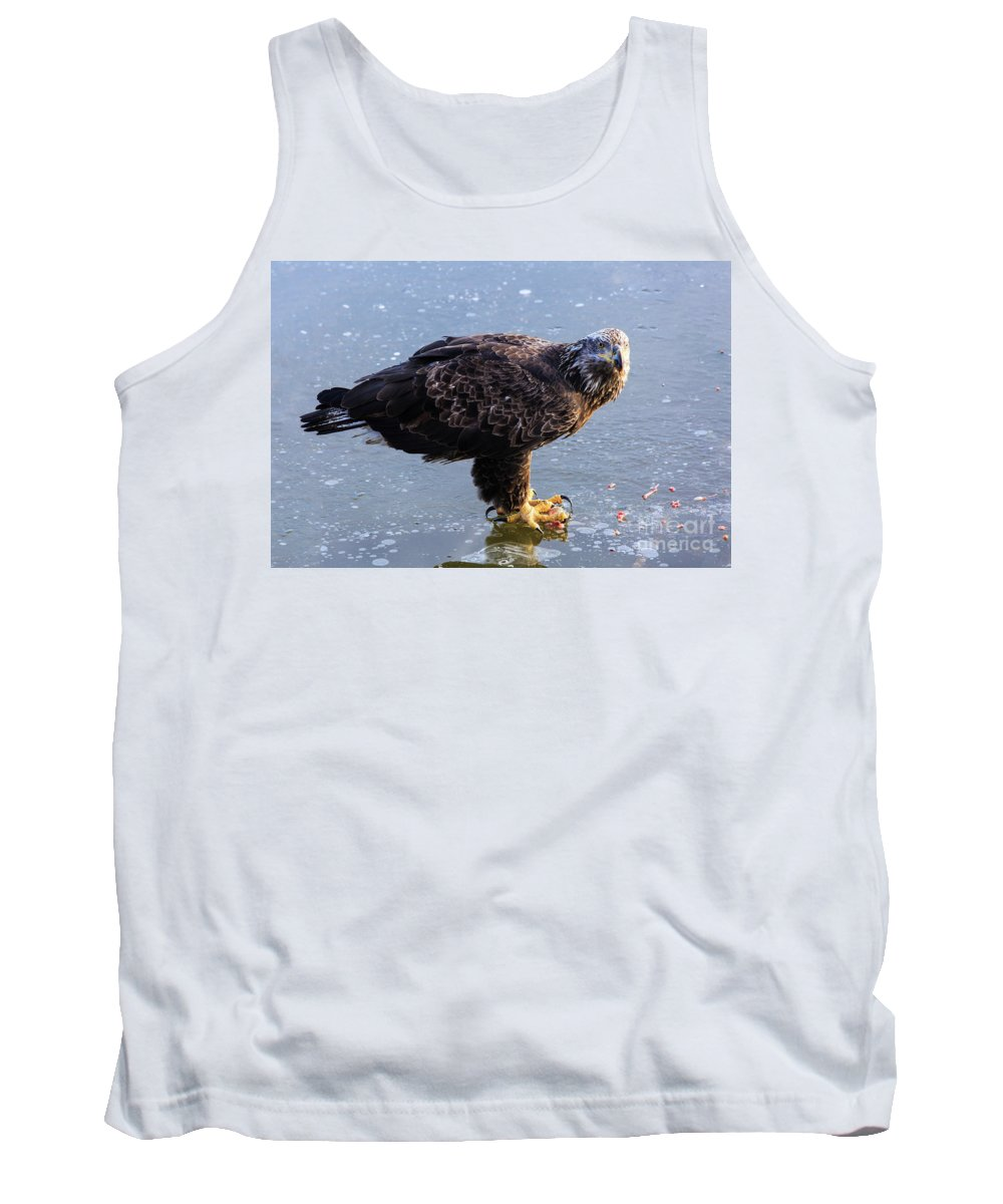 Eagles Tank Top featuring the photograph Immature Eagle Having Lunch by Terri Morris