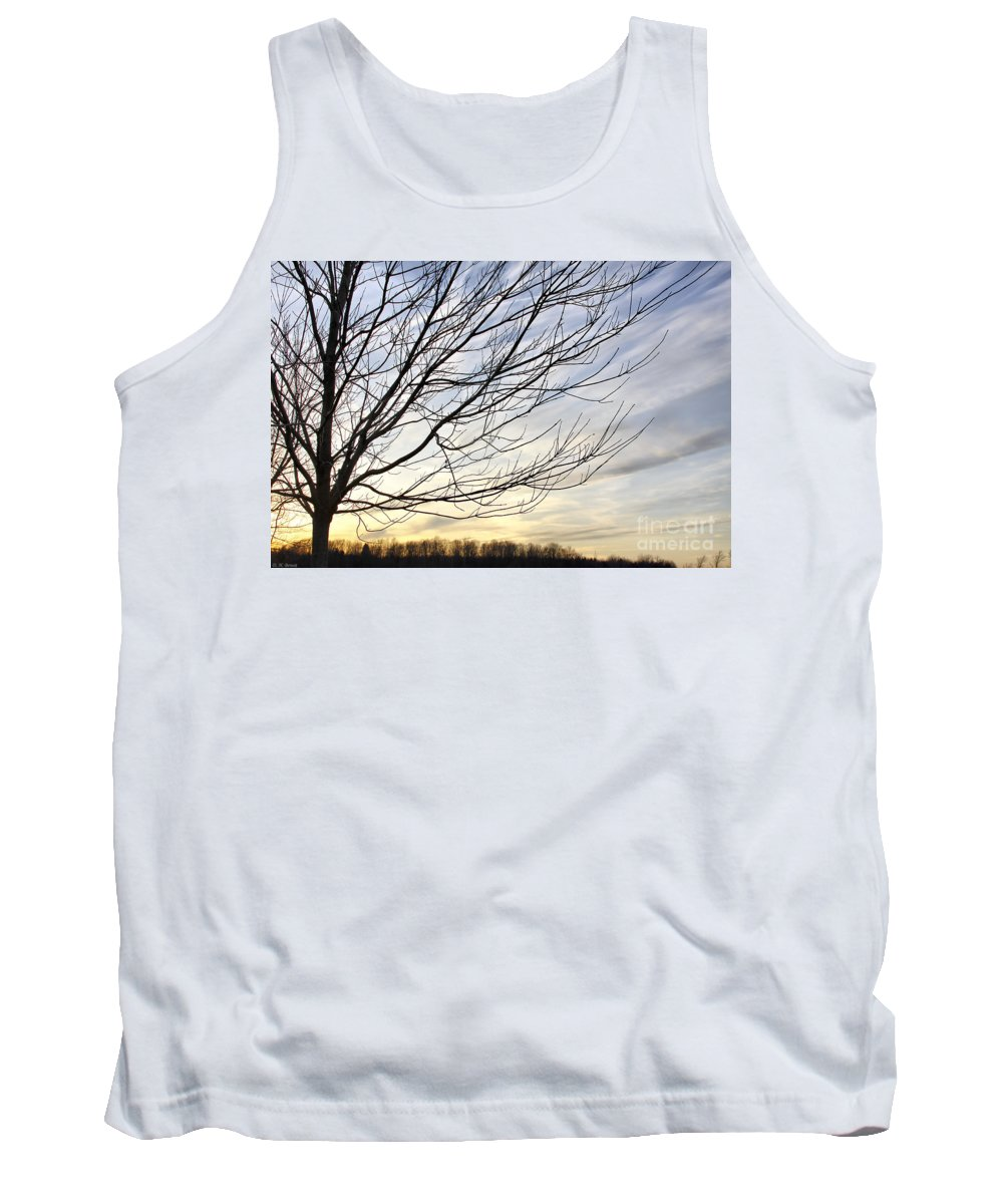 Sky Tank Top featuring the photograph Just A Tree And Clouds by Deborah Benoit