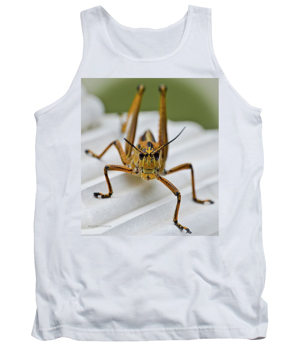 Grasshopper Tank Top featuring the photograph Land Lubber by DigiArt Diaries by Vicky B Fuller