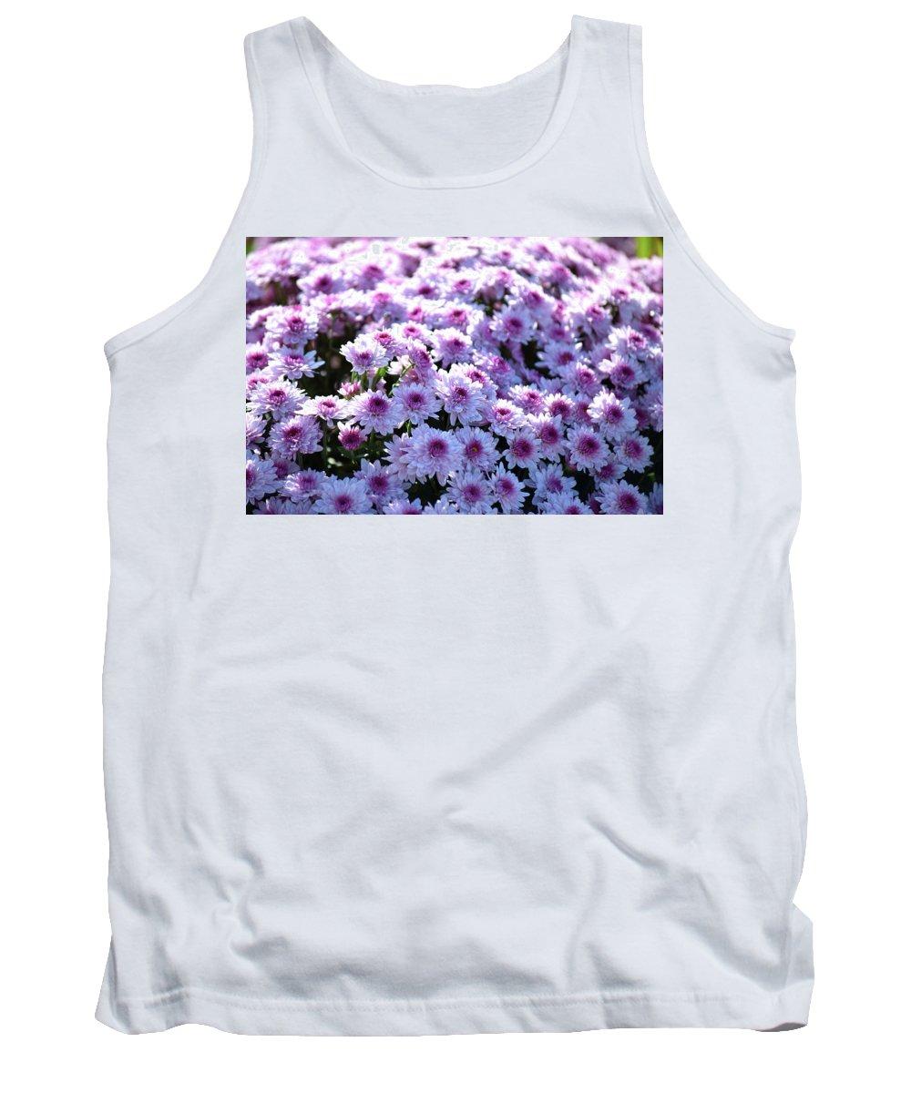 Mums Tank Top featuring the photograph Lavender Mums by Linda Benoit