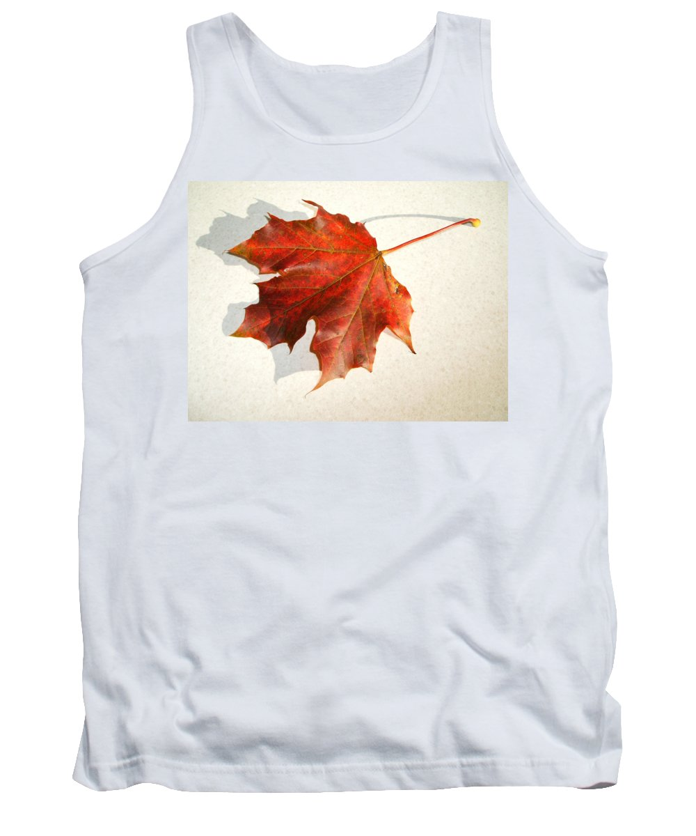 Leaf Tank Top featuring the photograph Leaf by Cliff Norton