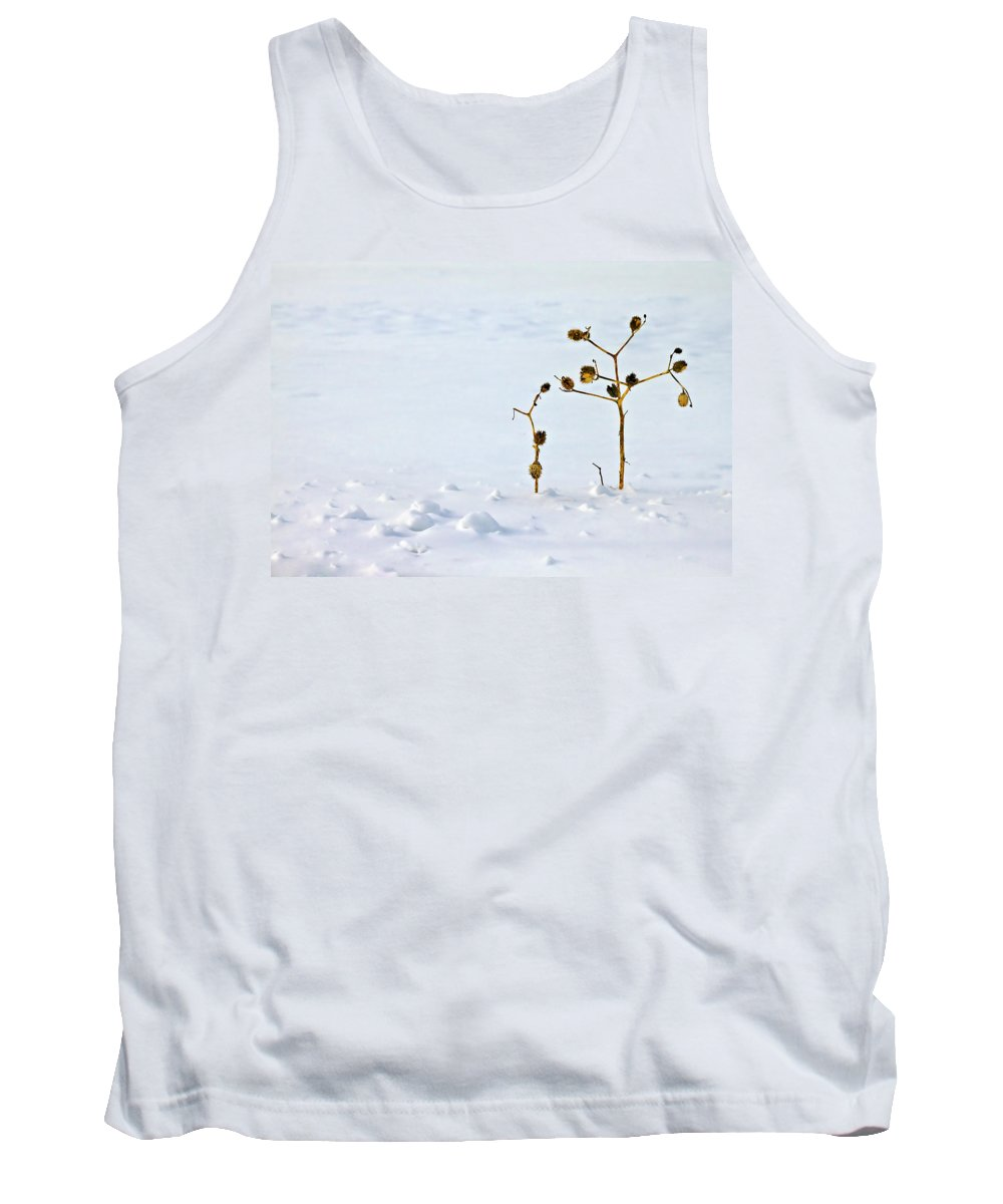 Blur Tank Top featuring the photograph Let's Stick Together by Evelina Kremsdorf