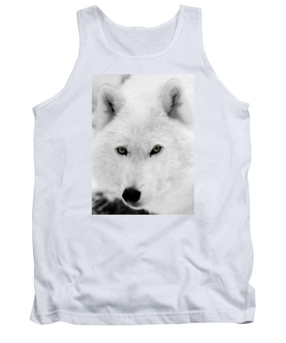 Arctic Wolf Tank Top featuring the photograph Look Into My Eyes by Larry Ricker