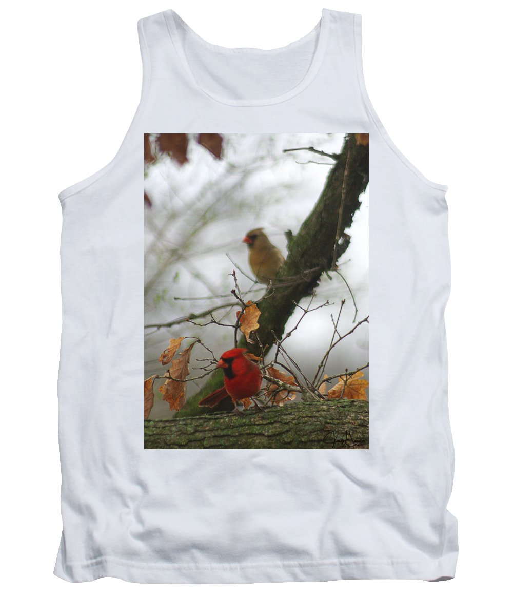 Jenny Gandert Tank Top featuring the photograph Love At First Sight by Jenny Gandert