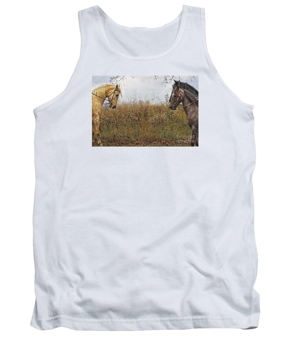 Horse Tank Top featuring the photograph Meeting A Friend by Dawn Gari