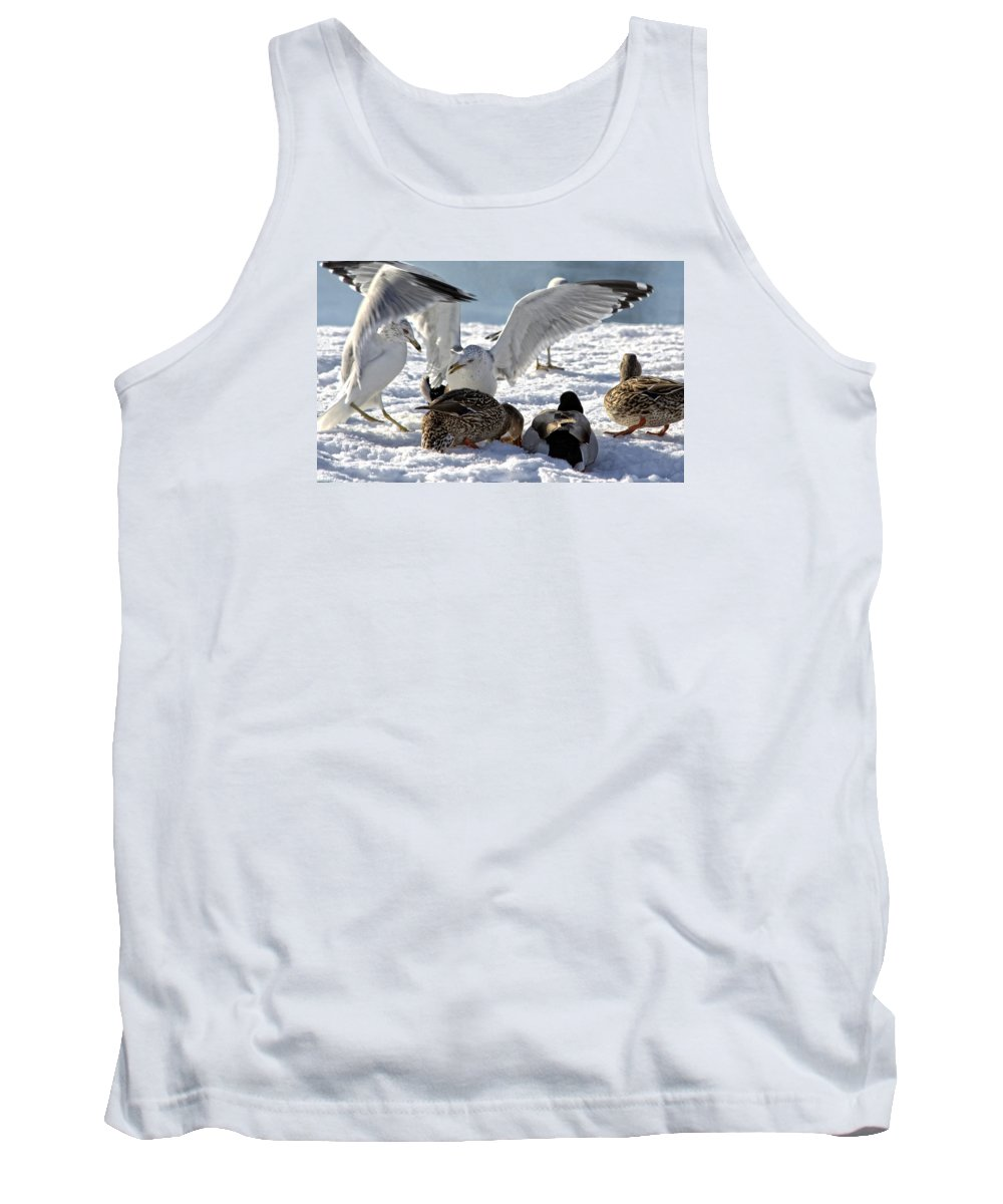 Bird Tank Top featuring the photograph Meeting Time by Michelle Neidigh