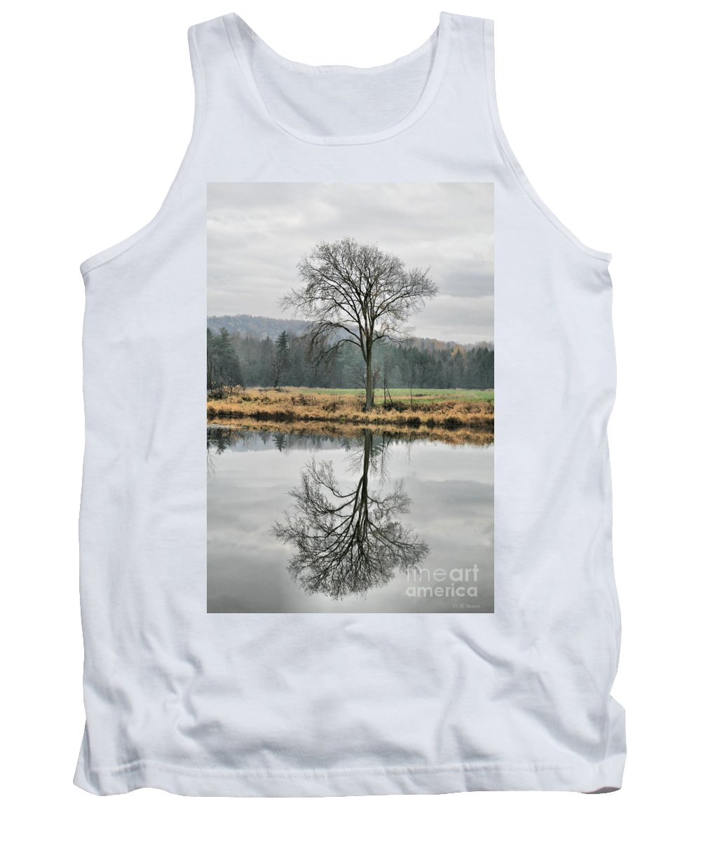 Reflections Tank Top featuring the photograph Morning Haze And Reflections by Deborah Benoit
