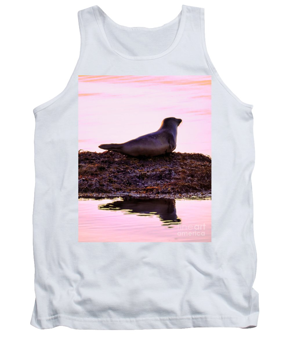 Atlantic Tank Top featuring the photograph Morning Meeting by Joe Geraci