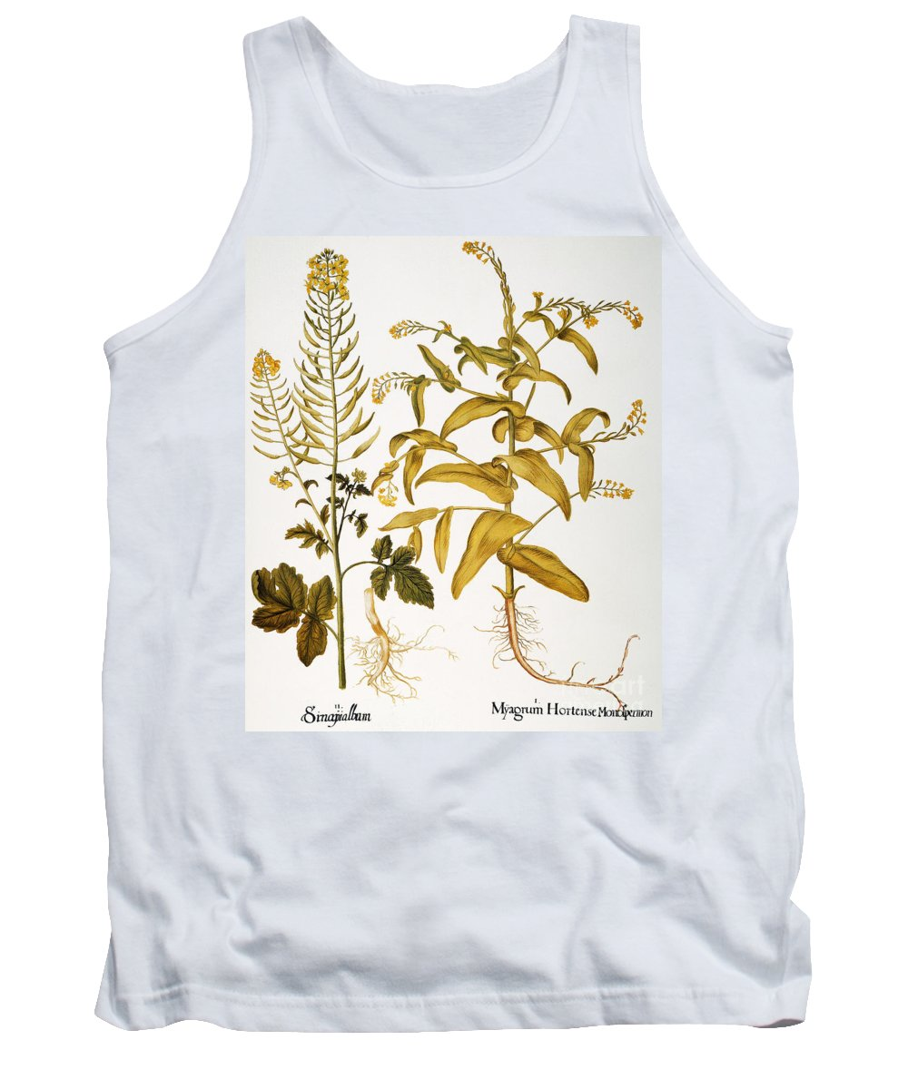 1613 Tank Top featuring the photograph Mustard Plant, 1613 by Granger
