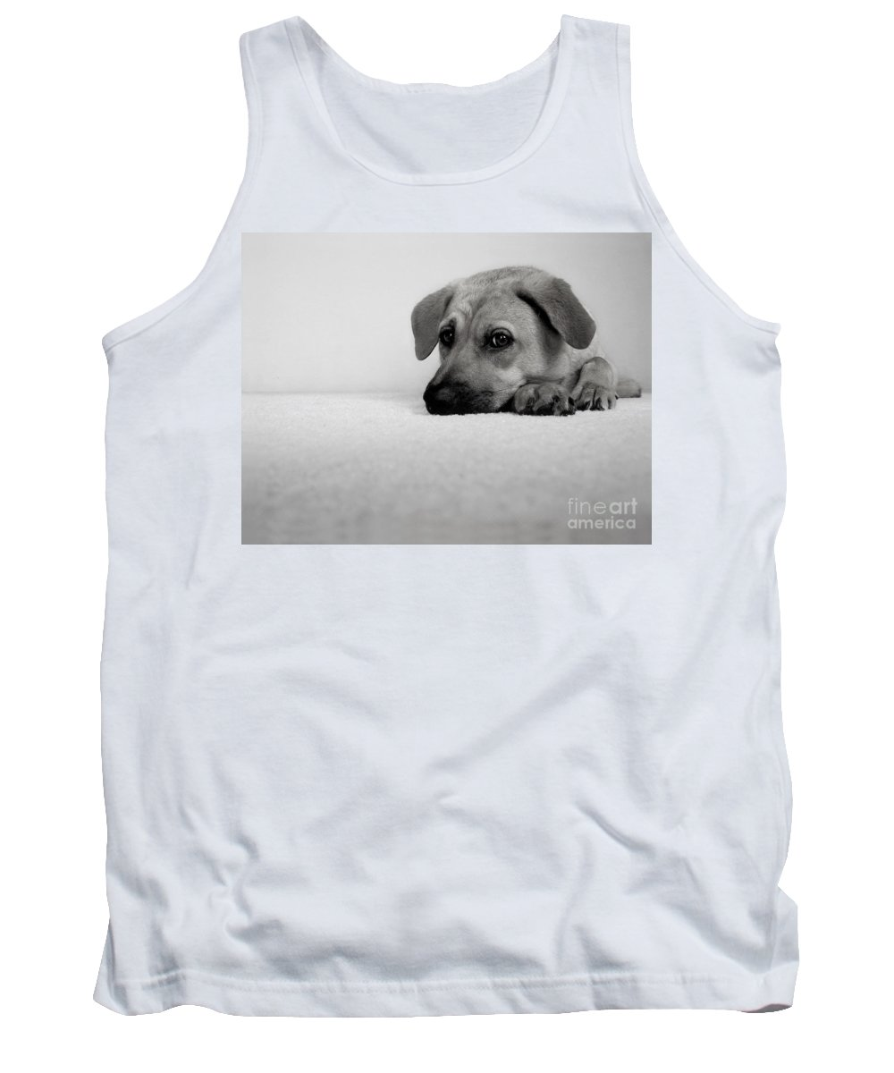 Animal Tank Top featuring the photograph My Girl by Dana DiPasquale