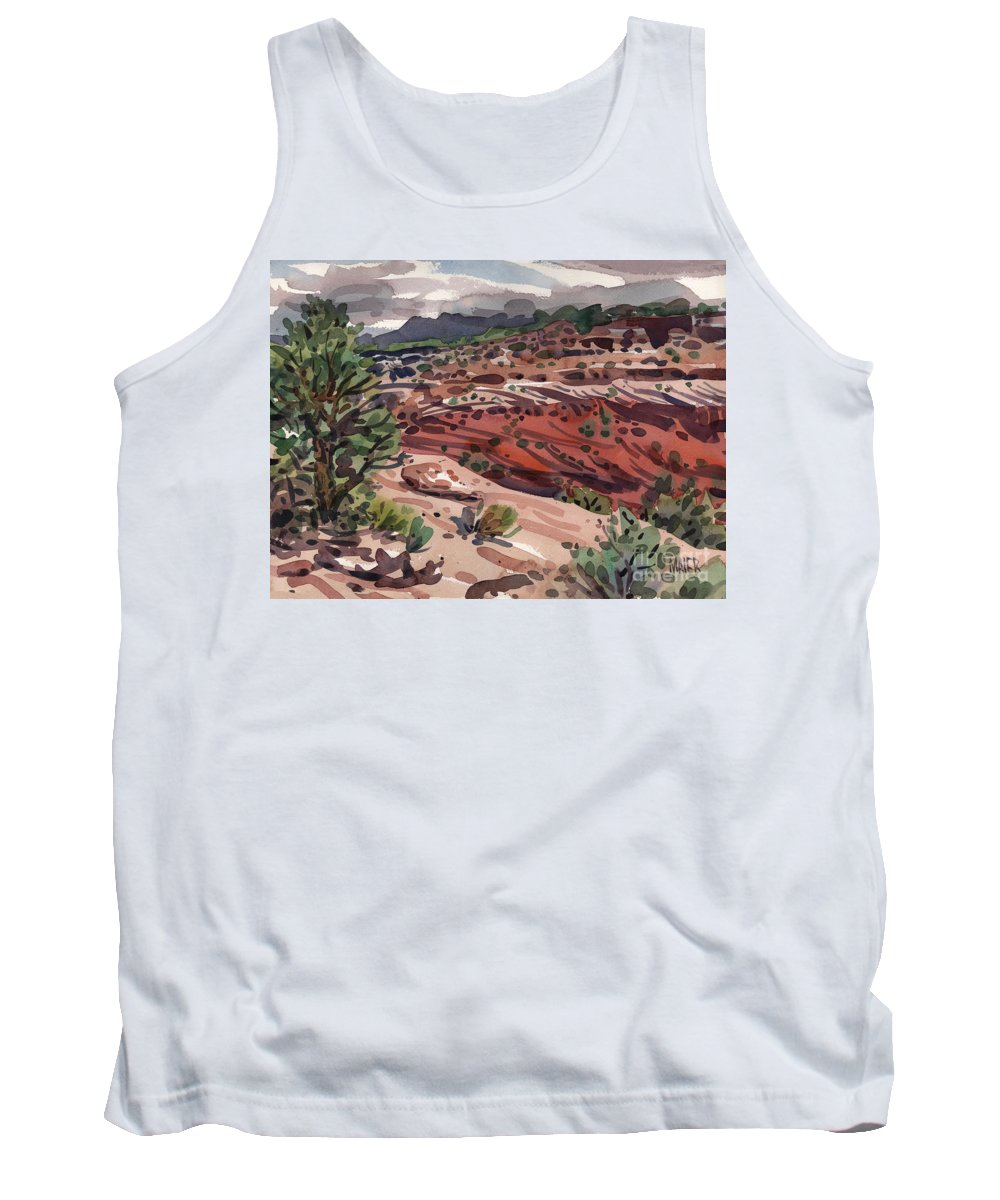 Canyon De Chelly Tank Top featuring the painting Near The Edge by Donald Maier