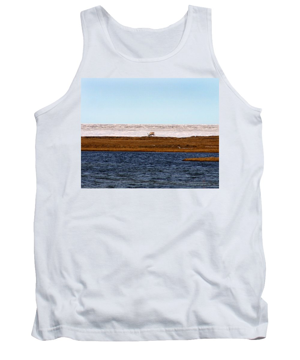 Arctic Tank Top featuring the photograph North Slope by Anthony Jones