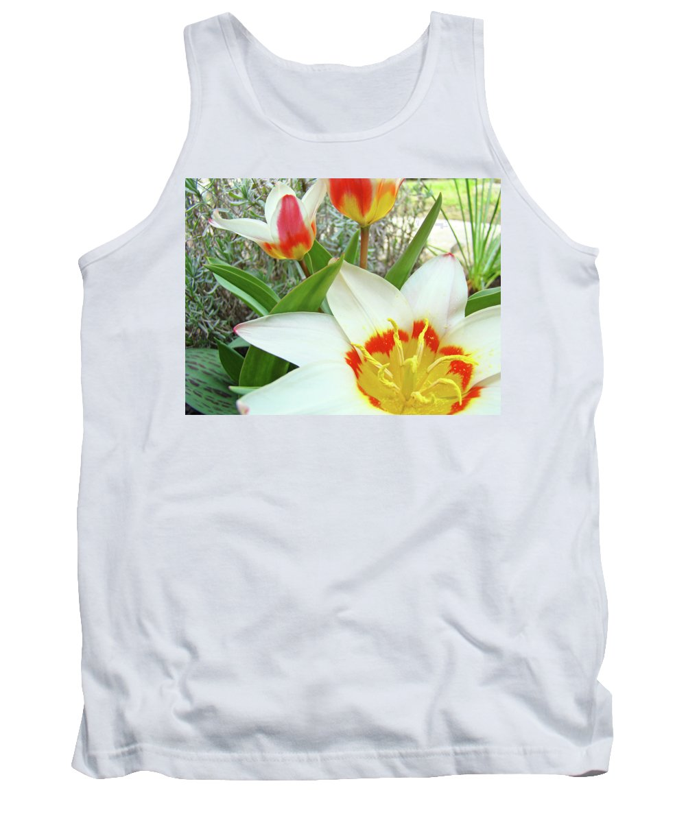 Tulip Tank Top featuring the photograph Office Art Tulips Tulip Flowers Giclee Art Prints Florals Baslee Troutman by Baslee Troutman