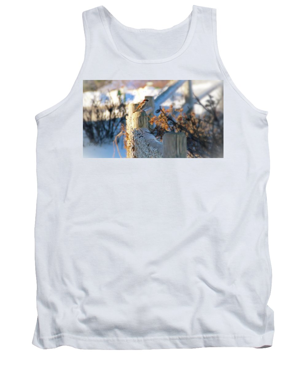 Small Bird Tank Top featuring the photograph On Post by Catherine Melvin