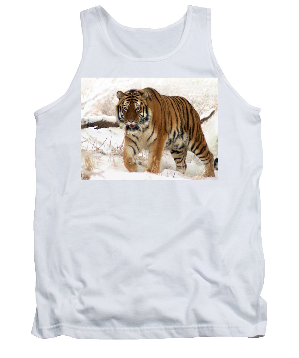 Tiger Tank Top featuring the photograph Orange In Winter by Bill Stephens
