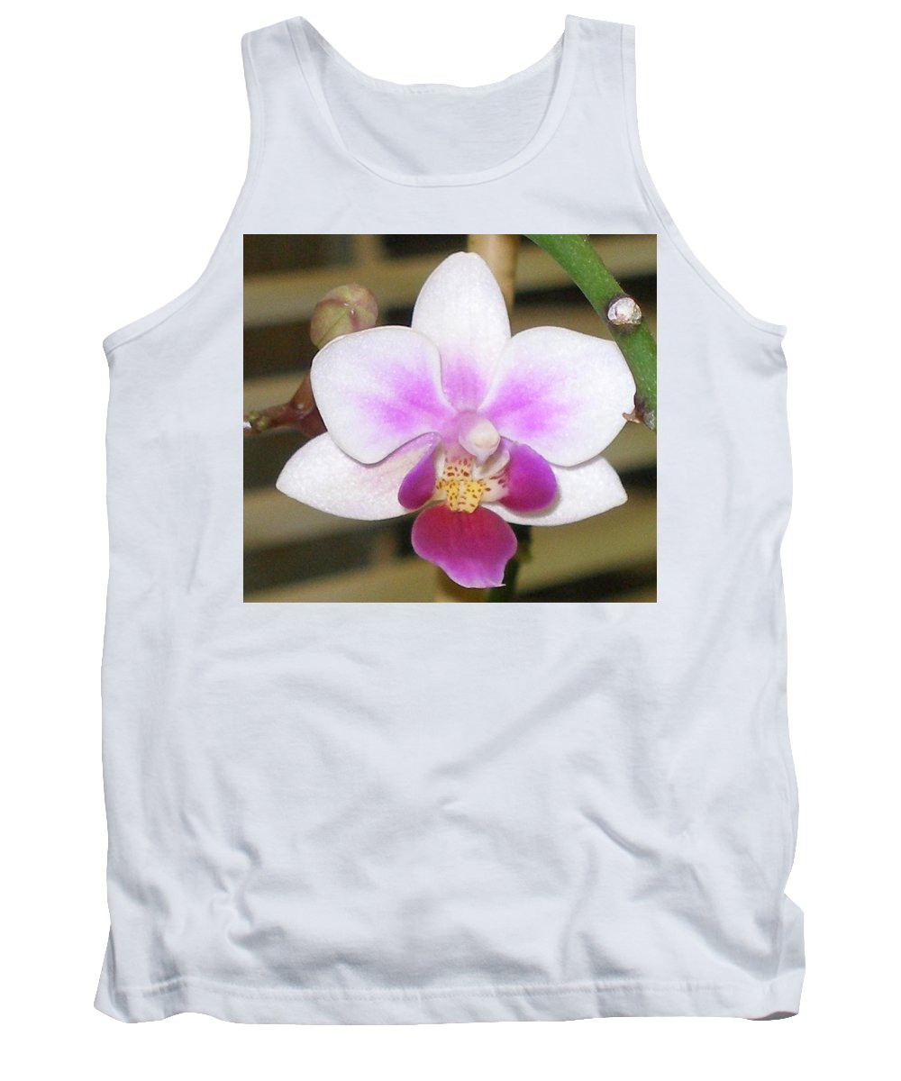 Purple Tank Top featuring the photograph Orchid Explosion by Maria Bonnier-Perez