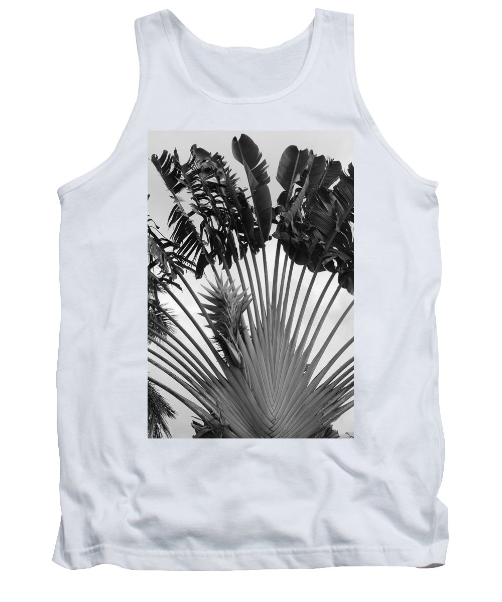 Macro Tank Top featuring the photograph Palm Frons by Rob Hans