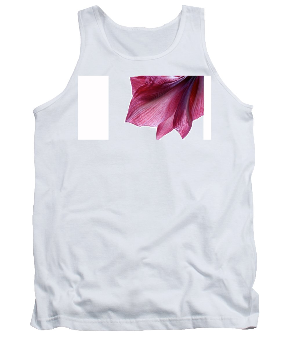 Lisa Knechtel Tank Top featuring the photograph Passing Beauty by Lisa Knechtel