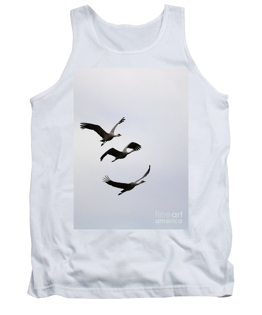 Sandhill Cranes Tank Top featuring the photograph Peaceful Sandhill Cranes Flying by Carol Groenen