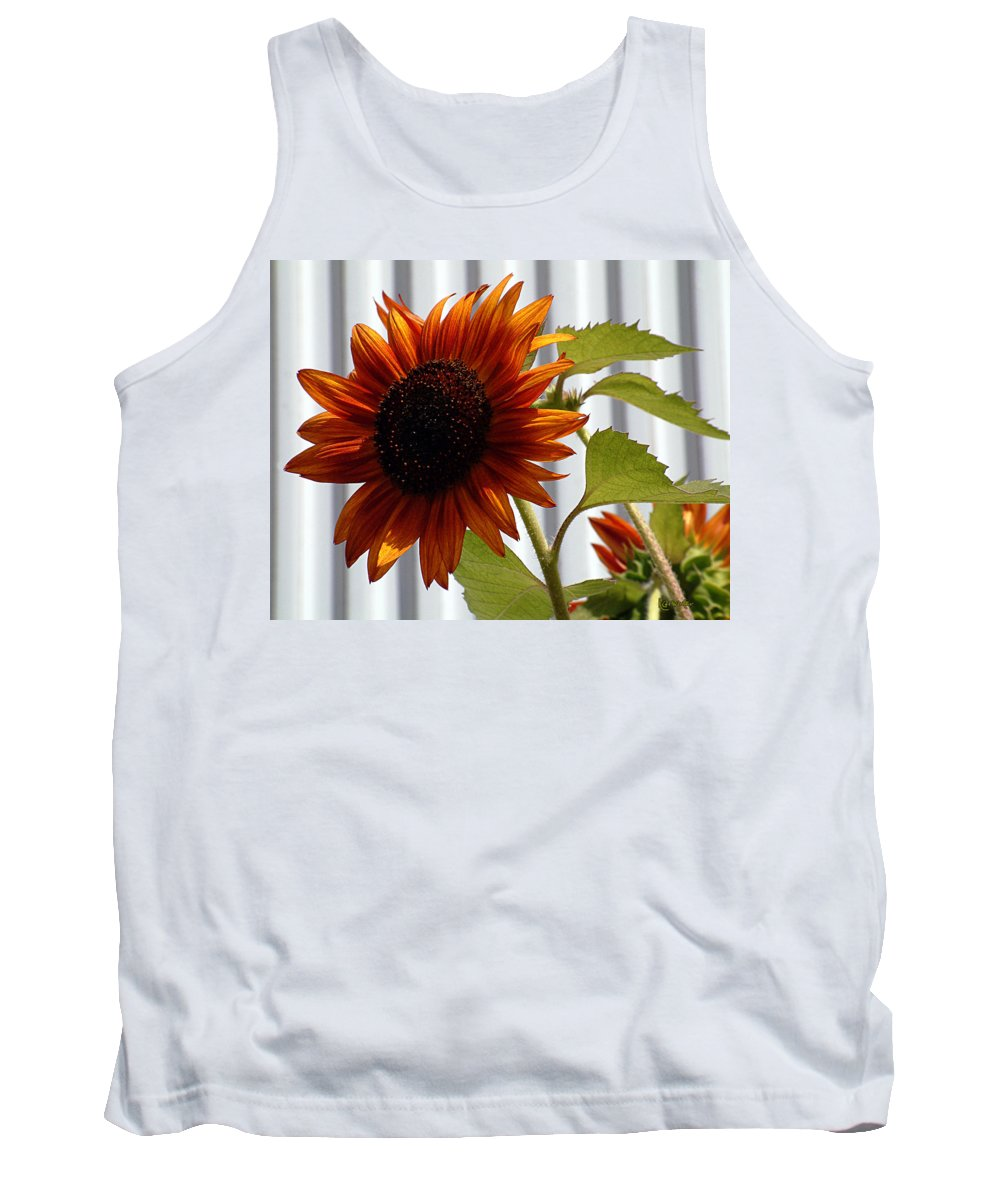 Brown Tank Top featuring the photograph Peerless by RC DeWinter