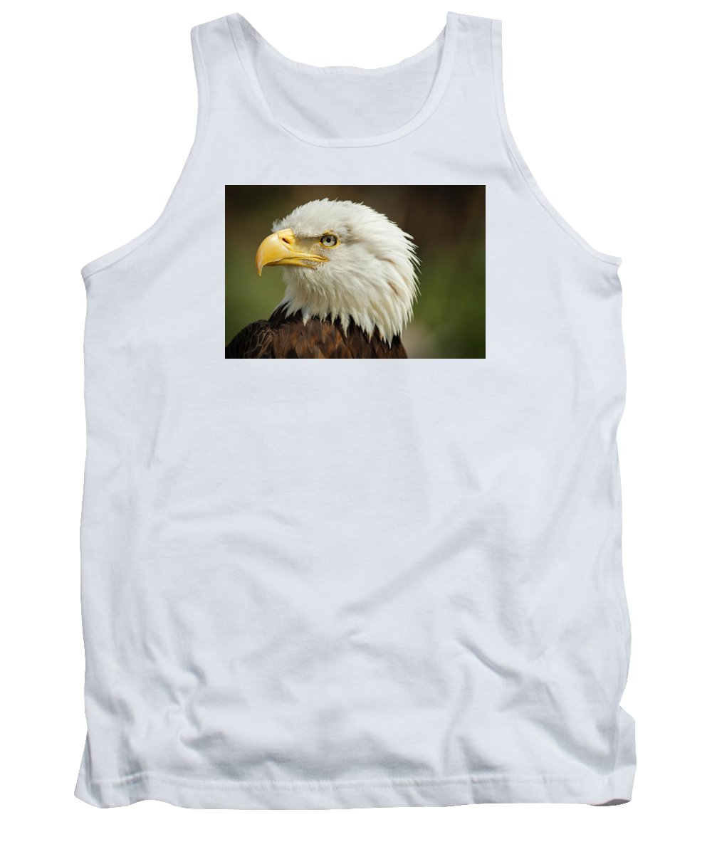 Bald Eagle Tank Top featuring the photograph Perfect Portrait by Rodney Ervin